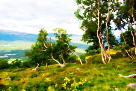 Curved mountain trees illustration background hd