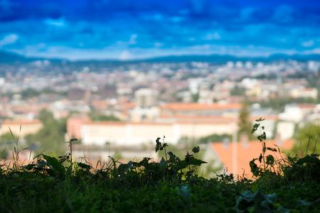 horizontal  green: Horizontal green grass with Oslo city bokeh background hd