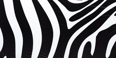 millitary: Horizontal black and white zebra texture background hd