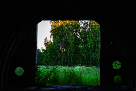 View on forest from military vault bokeh background hd Stock Photo