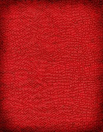 A sample of an exotic reptile texture
