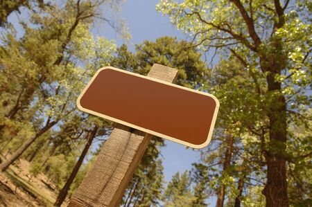 A blank sign in the National Forest Stock Photo