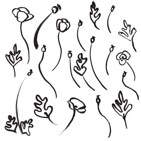 Set of hand drawn brush florals. botanical elements painted by ink. Black isolated on white.