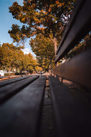 Bench in the autumn park. High quality photo Stock Photo