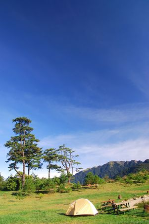 Beautiful campsite,tree,green grass and blue sky. Stock Photo