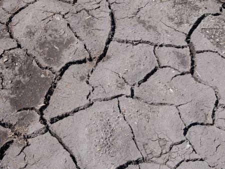 Cracked earth in dry farmland photo