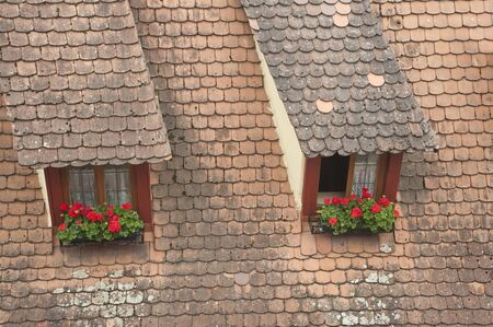 window on european building roof with flowers. photo