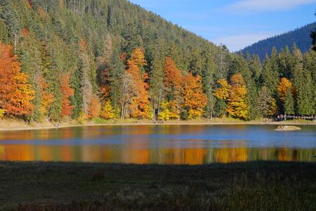 Synevyr mountain lake in Carpathian mountains, Ukraine, landscape day colorful shot