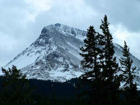 evident: Snow and heavy clouds form over Divide Mountain in northwestern Montana.  Previous snow falls are evident on the cragy slopes of the peak.  Shadows of trees create the foeground.