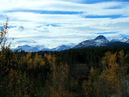 montañas nevadas: Caída formas follaje el primer plano de esta imagen de las montañas nevadas del Parque Nacional Glacier, en Montana sudeste. cielo azul se asoma a través vetas de nubes blancas. Foto de archivo