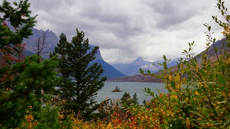 Seen through Pines and Autumn foliage, Wild Goose Island seem to float on the choppy water of St Mary Lake.  Gloomy storm clouds billow over the distant mountains of Glacier National Park, Montana.