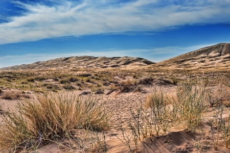 Kelso sand dunes in Mojave National monument with a beautiful dramatic sky in the back ground and grasses in the foreground