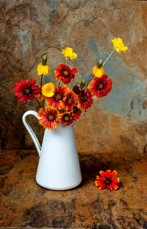 Beautiful boquet of Wild flowers in a white pitcher on a slate background in fall colors Stok Fotoğraf