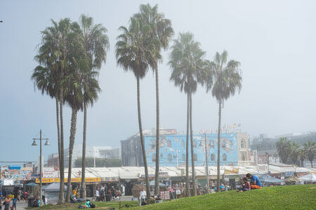 grassy knoll: Shoppers walking along Venice Beach boardwalk and people sitting on the grassy knoll on a misty morning