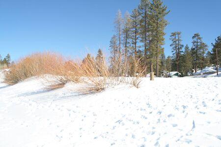Mid winter storm photo