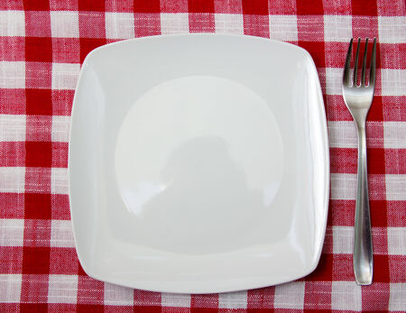 Plate and fork on checkered tablecloth  photo