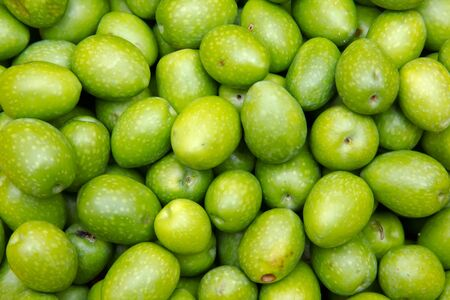 Freshly harvested olives viewed from up close