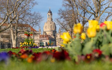 Spring vibes in Dresden, Frauenkirche, saxony, Germany