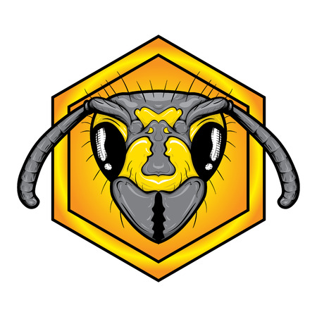 miel de abejas: la cabeza de la abeja. la cara de abeja. la cabeza de la abeja en el panal. Vectores