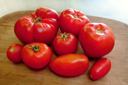 homegrown: Homegrown organic tomatoes on the wooden desk
