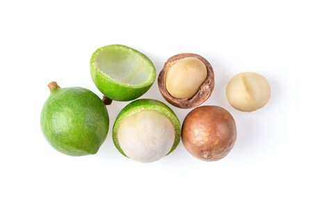 macadamia nut isolated on white background. top view