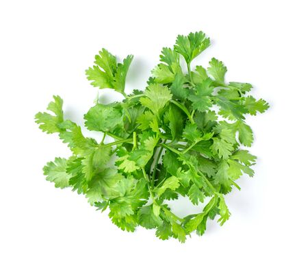 Coriander leaves isolated on white background. top view Banco de Imagens