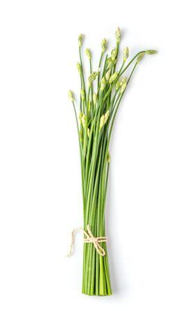 Fleur de ciboulette isolée sur fond blanc. vue de dessus