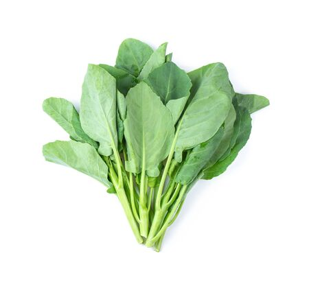 Chinese kale vegetable isolated on white background. top view 写真素材