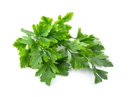 fresh parsley herb isolated on white background. full depth of field Stock fotó