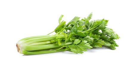 Fresh celery isolated on white background. full depth of field