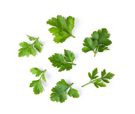 Parsley isolated on a white background. top view Imagens