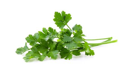 fresh parsley isolated on white background. full depth of field Фото со стока