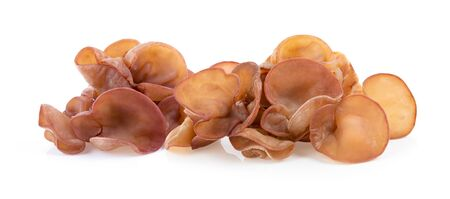 Jew's ear, Wood ear, Jelly ear isolated on white background. full depth of field Archivio Fotografico