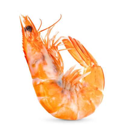 Cooked shrimps isolated on white background. full depth of field