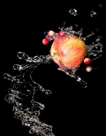 Яблоко с каплями воды и клюквы на черном фоне Фото со стока - 15124319