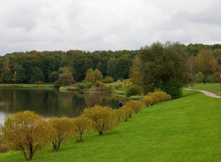 Green grass on the bank of the pond with young willows against the background autumn rain clouds photo