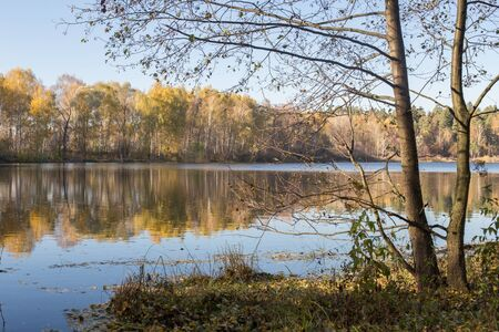 yellow alder: Autumn leaf on the lake Bulganinskoe Stock Photo