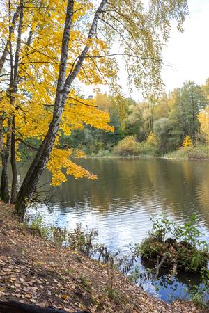 Autumn scenery on the river Pekhorka