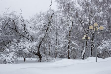 Balashikha, Moscow region, Russia - February 04: Snowdrifts in the streets after a heavy snowfall in Moscow and Moscow region Фото со стока - 94881381