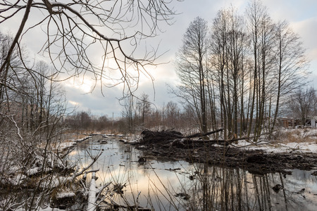 Balashikha, Moscow area, Russia - December 07, 2017: Cleaning of the Malashka river bed of silt, dirt and thickets