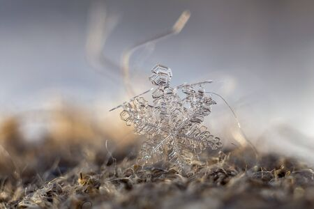 Close-up of a snowflake crystal