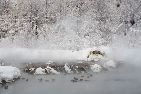 Snow-covered river banks of Pekhork in Akatovo in the bright winter afternoon