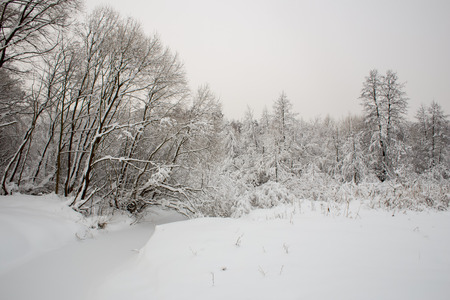 Snow-covered river banks of Gorenk in Akatovo in the bright winter afternoon