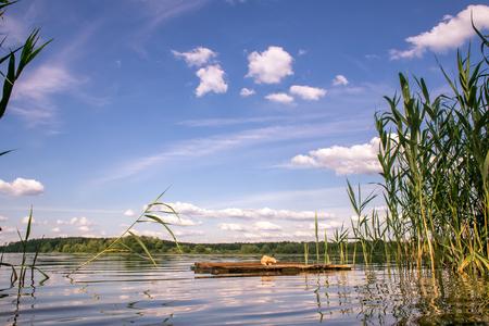 Summer landscape on Bear lakes Фото со стока