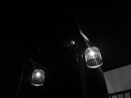 lampekap: Vogelkooi ontwerp lampenkap