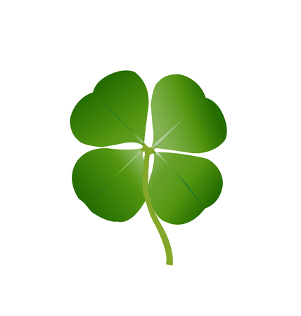 lucky clover: Lucky four-leaf clover isolated on white background Illustration