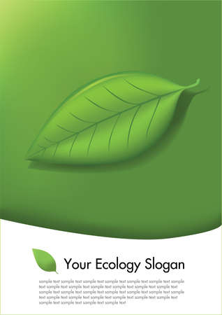 eco card vector Vector