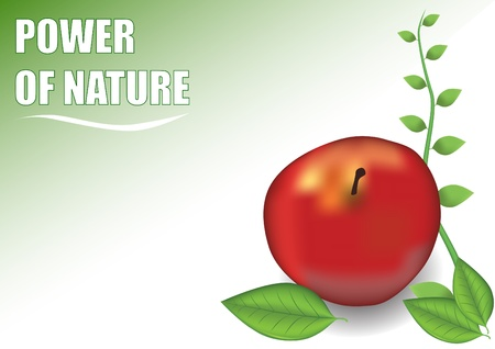 power of nature green design Vector
