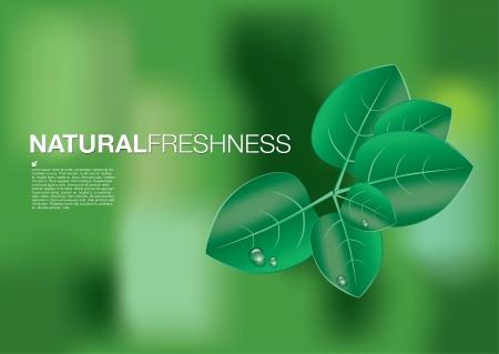 reflectie water: natuur concept achtergrond Stock Illustratie