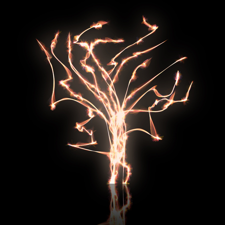 tree of flames photo